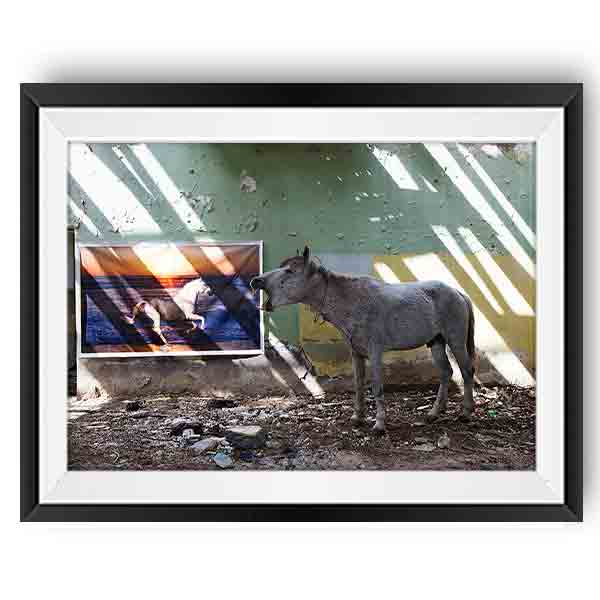 Anka Gujabidze Untitled Limited Edition Print Fotografia